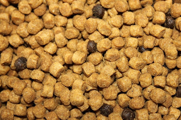 Dry pet meals manufacturing on the rise in rising markets