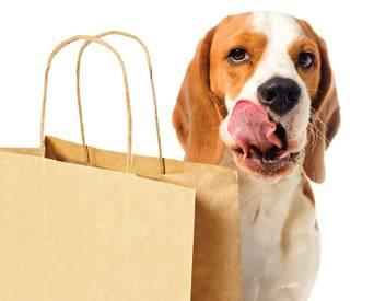 Pet-owners-premium-buying-trends-1306PETpremium