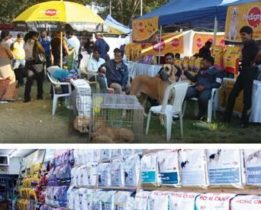 India-petfood-market-growing-1308PETmidyear