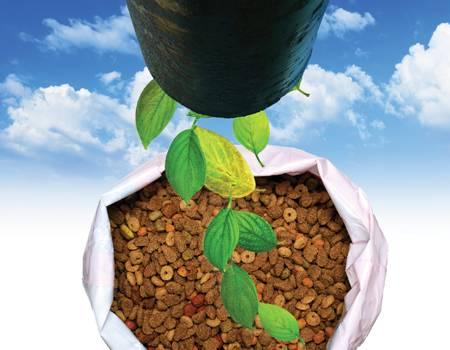 Sustainable petfood packaging systems 1303petpackaging