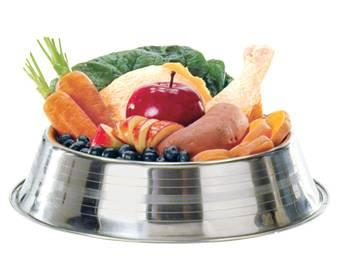 Halal, Kosher pet food products gaining traction
