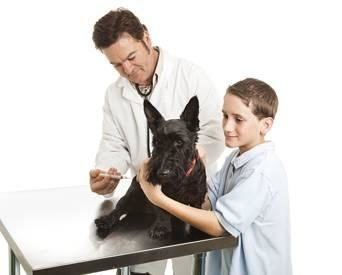 vet-with-family-1205PETveterinary