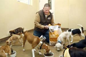 dogs-eating-petfood-1311PETmerrick.jpg