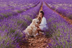 DiamondV_woman and dog in lavender field