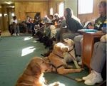 Petfood-Forum-prison-dogs